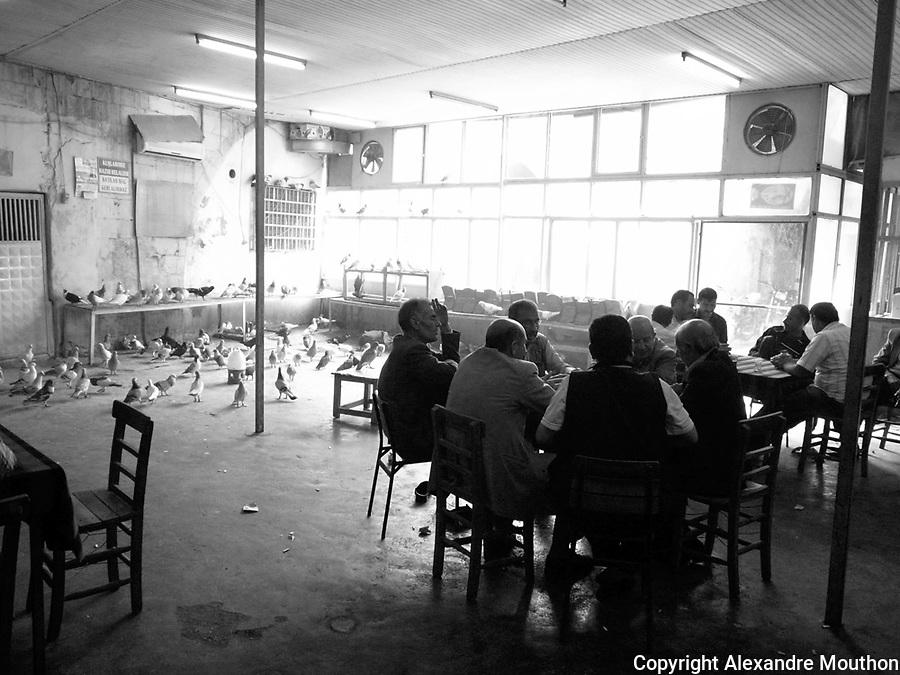 Les cafés-pigeons sont des lieux d'intense sociabilité.
