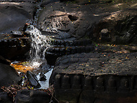 """Kbal Spean  (""""Bridge Head"""") is an Angkorian era archaeological site on the southwest slopes of the Kulen Hills to the northeast of Angkor in Siem Reap District, Siem Reap Province, Cambodia. It is situated along a 150m stretch of the Stung Kbal Spean River, 25 kilometres (16mi) from the main Angkor group of monuments, which lie downstream.<br /> The site consists of a series of stone rock relief carvings in sandstone formations of the river bed and banks. It is commonly known as the """"Valley of a 1000 Lingas"""" or """"The River of a Thousand Lingas"""". 11th and 12th centuries.<br /> The motifs for stone carvings are mainly myriads of lingams (phallic symbol of Hindu god Shiva), depicted as neatly arranged bumps that cover the surface of a sandstone bed rock, and lingam-yoni designs. There are also various Hindu mythological motifs, including depictions of the gods Shiva, Vishnu, Brahma, Lakshmi, Rama, and Hanuman, as well as animals (cows and frogs).<br /> <br /> The carving of vestiges began with the reign of King Suryavarman I and ended with the reign of King Udayadityavarman II; these two kings ruled between the 11th and 12th centuries. The 1,000 lingas, but not other sculptures, are attributed to a minister of Suryavarman I during the 11th century, and these were carved by hermits who lived in the area. Inscriptions at the site testify to the fact that most of the sculpting was done during the reign of Udayadityavarman II. It is also mentioned that King Udayadityavarman II consecrated a golden ling here in 1059 AD. It is believed that the Siem Reap River flowing into Angkor is blessed by the sacred lingas over which it flows.<br /> <br /> The archaeological site was discovered in 1969 by Jean Boulbet, an ethnologist, but further exploration was cut off due to the Cambodian Civil War. The site regained prominence for safe visits from 1989."""