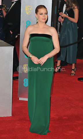 Amy Adams at the EE British Academy Film Awards (BAFTAs) 2017, Royal Albert Hall, Kensington Gore, London, England, UK, on Sunday 12 February 2017.<br /> CAP/CAN<br /> &copy;CAN/Capital Pictures /MediaPunch ***NORTH AND SOUTH AMERICAS ONLY***