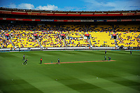 A general view of the International Twenty20 cricket match between the NZ Black Caps and Pakistan at Westpac Stadium in Wellington, New Zealand on Saturday, 6 January 2018. Photo: Dave Lintott / lintottphoto.co.nz