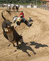 Ram Rodeo Tour'14 Milverton