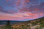 Dawn, Marietta Vineyards, Yorkville, Mendocino County, California.psd