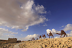 Isarael, Negev, Avdat, built in the 1st century by the Nabateans. A world Heritage Site as part of the Spice Route