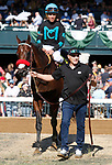 October 05, 2019 : #4 Stubbins and jockey Joel Rosario win the 23rd running of The Woodford PResented by Keeneland Select Grade 2 $200,000 for owner McShane Racing and trainer Doug O'Neill at Keeneland Racecourse in Lexington, KY on October 04, 2019.  Candice Chavez/ESW/CSM