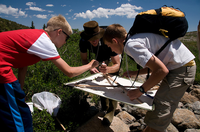 sixth grade volunteer learning insect collection techniques, research, researcher, volunteers, entomology, field study, search for the rare mayfly, Ephemerella apopsis, conducted by Brian Heinold in Rocky Mountain National Park, Colorado, USA