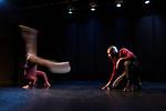 Duo en sol majeur<br /> <br /> Chor&eacute;graphie : Christine Coudun<br /> avec Adilson Horta de Sousa et Fran&ccedil;ois Kaleka<br /> Compagnie Black Blanc Beur<br /> Cadre : Nuit de la danse 2017<br /> Date : 29/04/2017<br /> Lieu : Centre Mandapa<br /> Ville : Paris