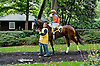 Moon Philly before The Justakiss Stakes at Delaware Park on 10/7/13