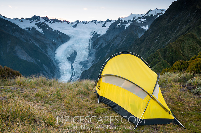 Dawn over Franz Josef Glacier as seen from campsite atop of Alex Knob, Westland NP, West Coast, New Zealand