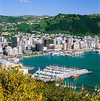 New Zealand, North Island, Wellington: Harbour and City View from Mount Victoria | Neuseeland, Nordinsel, Wellington: Blick ueber die Stadt und den Hafen vom Mount Victoria