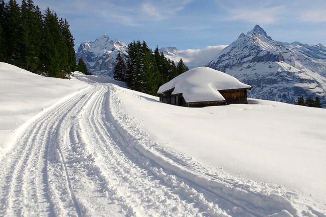 Toboggan run in the winter Snow in the mountains near Grindelwald First - Swiss Alps - Switzerland