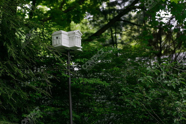 Bird house in the shape of the White House in the garden of Bill and Hillary Clinton's home, Chappaqua, New York, USA, May 15, 2008