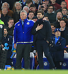 Chelsea's Guus Hiddink chats with Tottenham's Mauricio Pochettino during the Barclays Premier League match at Stamford Bridge Stadium.  Photo credit should read: David Klein/Sportimage