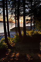 Sunset along the shore of Revillagigedo Island, near Ketchikan, southeast, Alaska.