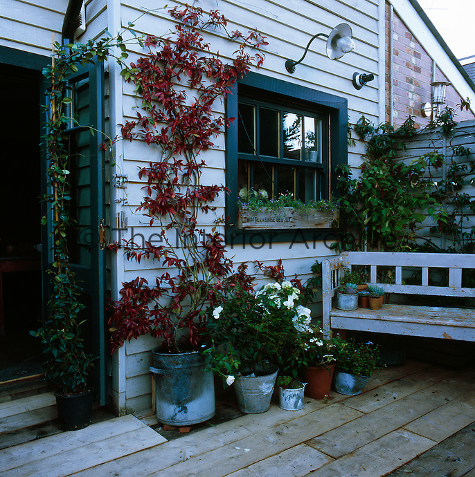 The rear of a timber clad house with a wooden deck outside the back door. A bench seat and plants in containers are arranged in a group.