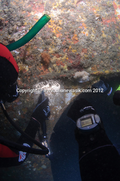 In the wheelhouse of the HMNZS Wellington (F^() wreck there is a plaque to the Wellington Underwater Club. Divers from this club clean the plaque of marine growth.