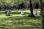 People sitting on grass in a park next to Euston station, London, England
