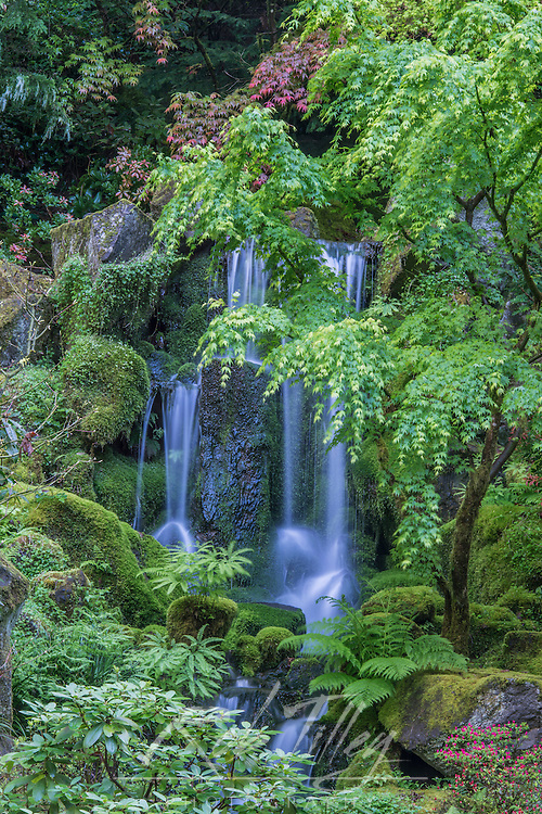 USA, OR, Portland, Porland Japanese Garden Waterfall