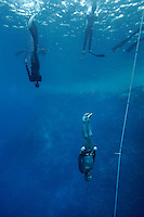 "Steinar Schjager (Norway) warming up during freediving competition ""Bizzy Blue Hole"" in Dahab, Sinai, Egypt. ©Fredrik Naumann/Felix Features"