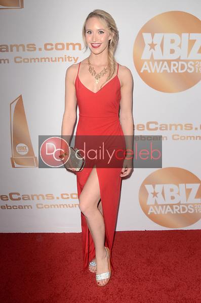 Ginger Banks<br /> at the 2019 XBIZ Awards, Westin Bonaventure Hotel, Los Angeles, CA 01-17-19<br /> David Edwards/DailyCeleb.com 818-249-4998