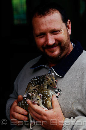 Eastern Quoll keeper and cafe owner, Lithgow, New South Wales