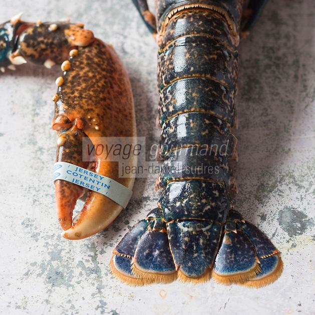 France, Manche (50), Cotentin,  Homard du Cotentin  et de Jersey// France, Manche, Cotentin,  Cotentin and Jersey lobsters - Stylisme : Valérie LHOMME
