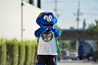 San Jose, CA - Wednesday August 29, 2018: Mascot, Q prior to a Major League Soccer (MLS) match between the San Jose Earthquakes and FC Dallas at Avaya Stadium.