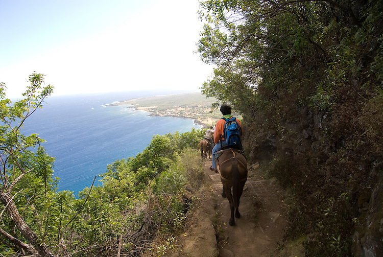 Hawaii: Molokai, the Mule Ride from the cliff tops down 1,600 feet to the leper colony at Kalaupapa. Model released..Photo himolo142-72197.Photo copyright Lee Foster, www.fostertravel.com, lee@fostertravel.com, 510-549-2202