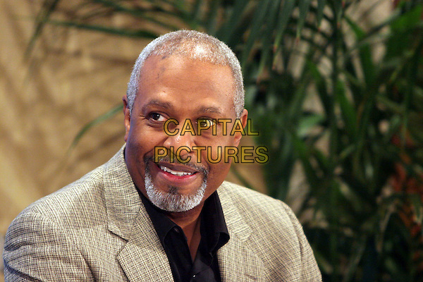 JAMES PICKENS JR..37th Annual NAACP Image Awards Nominations - Press Conference held at The Peninsula Beverly Hills, Beverly Hills, California. .January 10th, 2006.Photo: Zach Lipp/AdMedia/Capital Pictures.Ref: ZL/ADM.headshot portrait goatee facial hair.www.capitalpictures.com.sales@capitalpictures.com.© Capital Pictures.