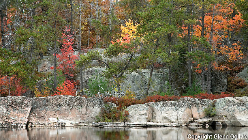 French River, Ontario Fall of 2006.