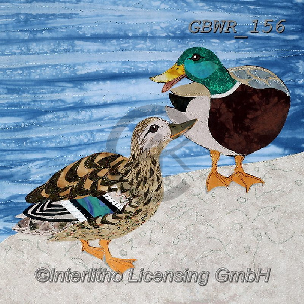 Simon, REALISTIC ANIMALS, REALISTISCHE TIERE, ANIMALES REALISTICOS, innovative, paintings+++++DuckDitty1,GBWR156,#a#, EVERYDAY