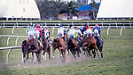 HALLANDALE BEACH, FL - JAN 06: The Race 9 field makes the clubhouse turn with nearly all hooves synchronized in The $100,000 Ginger Brew Stakes at Gulfstream Park on January 6, 2018 in Hallandale Beach, Florida. (Photo by Bob Aaron/Eclipse Sportswire/Getty Images)