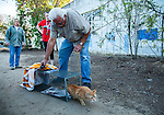 Ray Zeeb volunteer for H.A.R.P. (Homeless Animal Response Program) prepares to return a previously trapped cat that has now been spayed/neutered and vaccinated to its' outside home area in Antioch, California on Saturday, March 22, 2014.  Photo/Victoria Sheridan