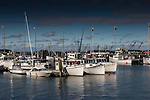 Roger Crowley / CrowleyPhotos.com..Fishing boats line the harbor in Glouster MA..