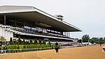 JUNE 05, 2019 : Morning workouts for Belmont Stakes contenders at Belmont Park, on June 5, 2019 in Elmont, NY.  Sue Kawczynski_ESW_CSM