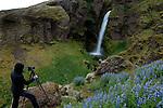 Europa, ISL, Island, Austurland (dt. Ostland), Südisland, Wasserfall, Fotograf, Urlauber, Tourist, Kategorien und Themen, Natur, Umwelt, Landschaft, Jahreszeiten, Stimmungen, Landschaftsfotografie, Landschaften, Landschaftsphoto, Landschaftsphotographie, Tourismus, Touristik, Touristisch, Touristisches, Urlaub, Reisen, Reisen, Ferien, Urlaubsreise, Freizeit, Reise, Reiseziele, Ferienziele<br /> <br /> [Fuer die Nutzung gelten die jeweils gueltigen Allgemeinen Liefer-und Geschaeftsbedingungen. Nutzung nur gegen Verwendungsmeldung und Nachweis. Download der AGB unter http://www.image-box.com oder werden auf Anfrage zugesendet. Freigabe ist vorher erforderlich. Jede Nutzung des Fotos ist honorarpflichtig gemaess derzeit gueltiger MFM Liste - Kontakt, Uwe Schmid-Fotografie, Duisburg, Tel. (+49).2065.677997, archiv@image-box.com, www.image-box.com]