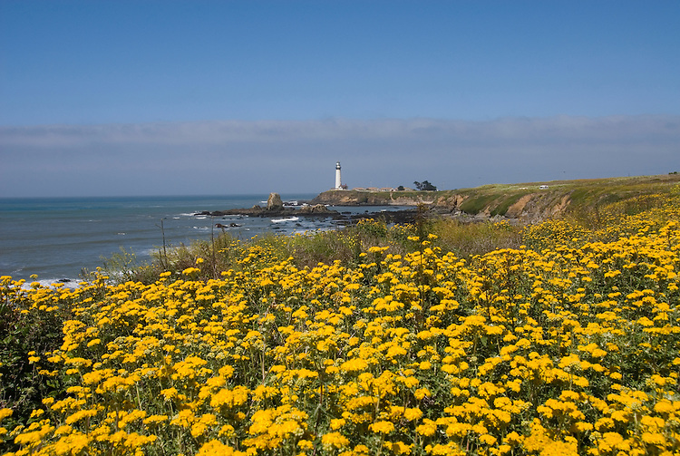 Pigeon Point Lighthouse, major example of  lighthouse architecture, now a Youth Hostel,.San Mateo Coast of California, south of San Francisco.  Photo copyright Lee Foster, 510-549-2202, lee@fostertravel.com, www.fostertravel.com.  Photo 484-31032