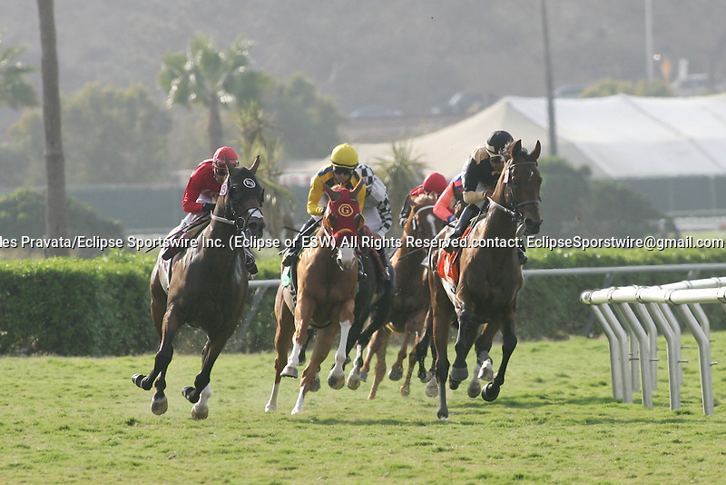 August 25 2010. Liberian Freighter and Martin Garcia lead the field on their way to winning the Harry F. Brubaker Stakes at Del Mar Race Track in Del Mar CA.