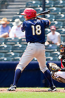 Chris Rahl #18 of the Harrisburg Senators at bat against the Richmond Flying Squirrels at The Diamond on July 22, 2011 in Richmond, Virginia.  The Squirrels defeated the Senators 5-1.   (Brian Westerholt / Four Seam Images)