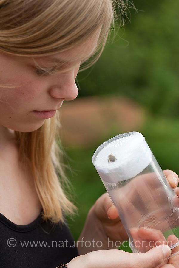 Mädchen, Kind bastelt eine Becherlupe, Beobachtungsgefäß aus 2 durchsichtigen Plastikbecher, einem Stück Styropor und Frischhaltefolie. Fertiges Beobachtungsgefäß: Gefangenes Tierchen, Insekt befindet sich unverletzt zwischen dem weichen Styropor und der dehnfähigen Frischhaltefolie der ineinander gestülpten beiden Plastikbecher und kann in Ruhe betrachtet werden