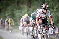 Jasper Philipsen (BEL/UAE - Emirates)<br /> <br /> Dwars door het Hageland 2019 (1.1)<br /> 1 day race from Aarschot to Diest (BEL/204km)<br /> <br /> ©kramon