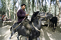 A Uighur (Uyghur) man tests out a horse on a shady lane at the animal market in the small town of Charbagh on the southern silk route.