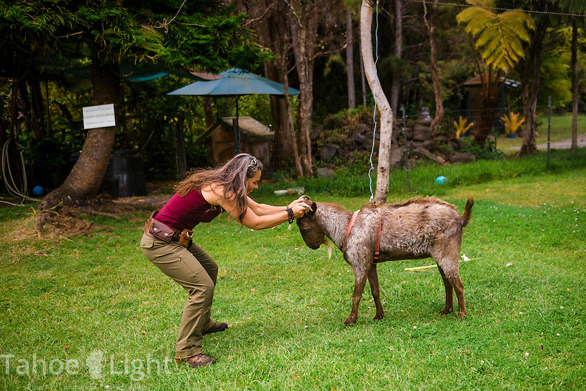 Friendly Ernest the Goat at the Volcano Garden Arts center near the entrance to Volcanoes National Park on the big island of Hawaii. Cafe Ono is also on the grounds and is hands down the best restaurant in the area. One of my main goals was seeing lava moving down to the sea, unfortunately at present the lava flow on Hawaii is tiny and on inaccessible private property.
