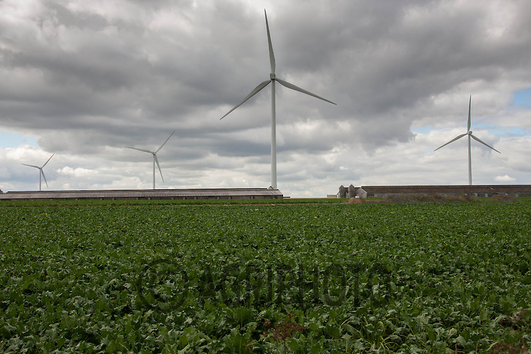 Wind turbines behind poultry sheds in Norfolk