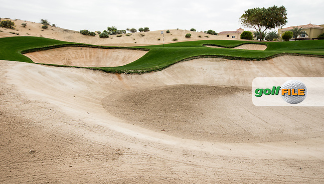 17th green at The Els Club , Dubai, United Arab Emirates.  28/01/2016. Picture: Golffile | David Lloyd<br /> <br /> All photos usage must carry mandatory copyright credit (&copy; Golffile | David Lloyd)
