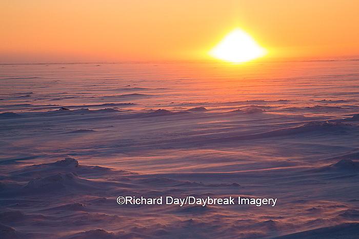 60595-01108 Sunset on tundra, Cape Churchill Wapusk National Park, Churchill, MB