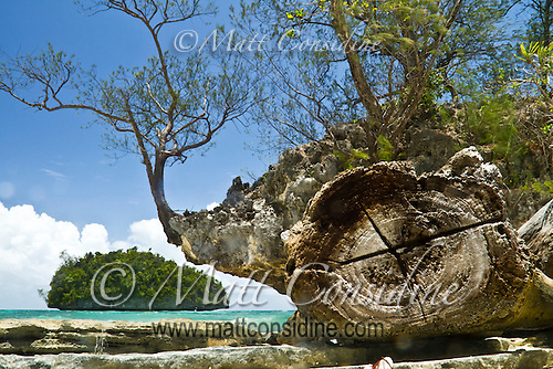 The Rock Islands of Palau are coral miracles. The sea and rain have eroded the coral, undercutting the borders of the islands, Palau Micronesia. (Photo by Matt Considine - Images of Asia Collection) (Matt Considine)