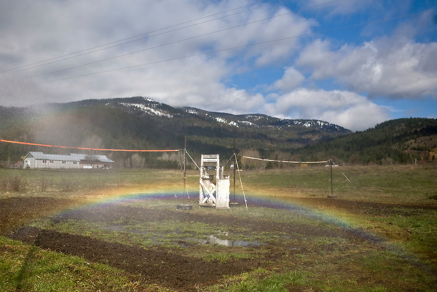 A rainbow appears on the mud volleyball courts while the Westside Fire District waters at the 2011 Mud Volleyball Tournament in Laclede, ID sponsored by the Kodiak Bar. .(©Matt Mills McKnight/2011)