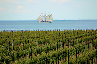 Tall ship passes a vineyard at Niagara on the Lake