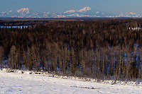 A team on the Yentna river with Mt. Mckinely and the Alaska Range in the background a few hours after leaving the re-start line in Willow during the 2011 Iditarod.