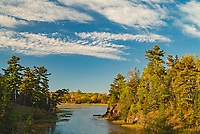 Boreal forest and inlet into Lake fo the Woods<br />